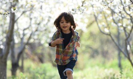 Wychowanie bez nagród ani bez kar