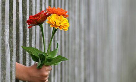 Jak nauczyć dziecko dawania?